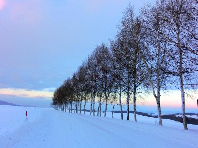 snow_160210